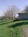 Продаю дом+50 соток земли, в гладянском районе село Яблона