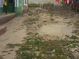 срочно продается дом г.комрат.ул.гаврилюка.есть огород и подвал.торг уместен.тел.