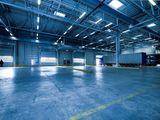 Chirie depozit. de la 100 m2 la 36 000 m2.  1 etaj