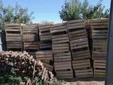 Lazi din lemn pentru fructe(300 de lazi).