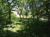 Vânzarea unui teren într-un sat de vacanță lângă satul Vatra