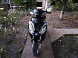Viper 50