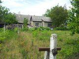 Продается дом с участком 12 соток Сынжера
