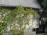Продается земельный участок с домом в районе Сынджера.