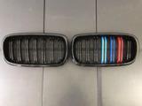 Решетка радиатора BMW X5/X6 ноздри F15/F16 2014