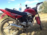 Viper Max 200