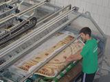 Curateniemd- современная фабрика чистки ковров. бесплатная доставка ковров
