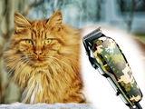 De ce să plătești cuiva tunsoarea animalului! Tunde singur! Mașină tuns animale. Doar 450 lei
