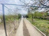 Com. Cricova - Zonă ecologică! casă cu 1 nivel, 100 mp + 10 ari, 36.500!!!