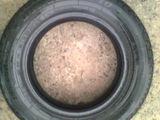 1шт. Шина б/у зимняя DUNLOP  SP10 195-65-R15. Cauciucuri Dunlop R15 195-65
