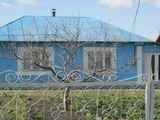 Casa cu un nivel, teren 7,8 ari, Falesti, Natalievca