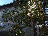 Продам Дом дачу, 2 этажный дом + 12 соток земли