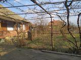 Продается дом в Валя-Колоницей