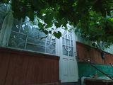Se vinde casă în orașul Nisporeni