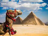 """Вечное лето в Египте - горящие цены на 31 октября - отели 5* - от """" EmiratTravel """"."""