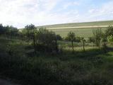 Lot de pamant pentru fazenda