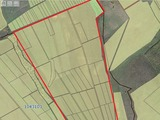 Urgent ! 30 hectare de meri (70 hectare de vie la dorinta) 3500 euro