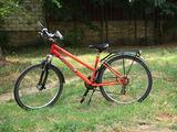 Pegasus bicicleta pentru copii/pentru dame