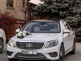 Mercedes S Class W222 cu sofer/с водителем