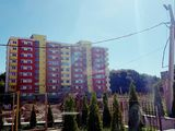 Cristin - Imobile va propune apartamente noi in casa noua!
