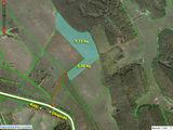 ! 10га земли сельхозназначения рядом с Бельцами, один собственник!