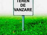 Vind 4 hectare de pamint arabel-Orhei-20.000 evro