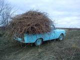 купою 4 шины б/у высокопрофильные в хорошем состоянии для Москвича.