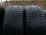 R 19   255 / 50   Dunlop