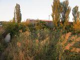Chetrosu. Construcţii 3200 m.p.şi lot de pămînt cu destinație industrială cu suprafața 1,88 ha cu