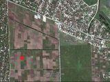 Se vinde un teren cu suprafata de 28,5 de ari (0.285 ha) in Chetrosu