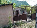 Se vinde Casa in Vadul lui Voda în sector de vile.(Vara-Prim)