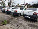 O gama larga de automobile, ingrijite, stare buna, Chirie, Botanica