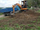 Mini Excavator servicii