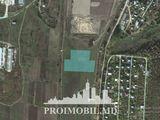 Lot! com. Ghidighici, 109 ari, teren agricol! Se vinde Urgent!