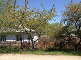 Vind casa cu lot de pamint alaturat, in centrul Drochiei, Дрокия, Drochia