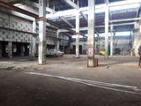 Сдаем производственно-складское помещение 1500м2 на Чеканах !