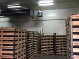 Frigider hincesti 1000 m2 chirie sau pastrare