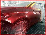 Покраска авто и кузовной ремонт. Профессиональная покрасочная камера. Ботаника.