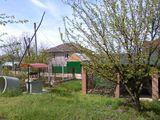 La Iaz, 6 ari p-ru constructii linga padure, linga iaz cu fintina si terasa pe teren...