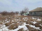 Vinzare teren 16 ari in Anenii Noi, s.Todiresti la pretul de 10 000 €