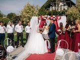 Inregistrarea casatoriei civile sub cerul liber orice culoare, stare civila la natura