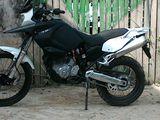 Honda scinerai