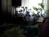 Vind Urgent apartament cu 2 odai in centru linga piata centrala or. Ungheni