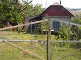 Продается дом во дворе гараж с подвалом, большая площадь земли, огород, много фруктовых деревьев