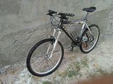 Bicicleta vind