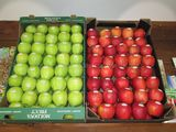 Cutii carton gros pentru mere!