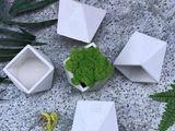 Givece decorative,Ghivece pentru suculenti, pentru cactusi.Горшки из бетона,вазаоны, кашпо