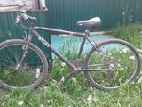 O bicicleta buna