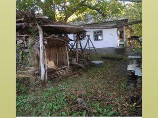 Райский уголок! Старинный дом и 58 соток, рядом1,5 квоты сливы, титул, и 1,5 га в лесу, титул!