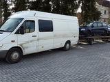 Transportare auto pe tral: Germania, Olanda, Belgia, Austria,Cehia,Slovacia